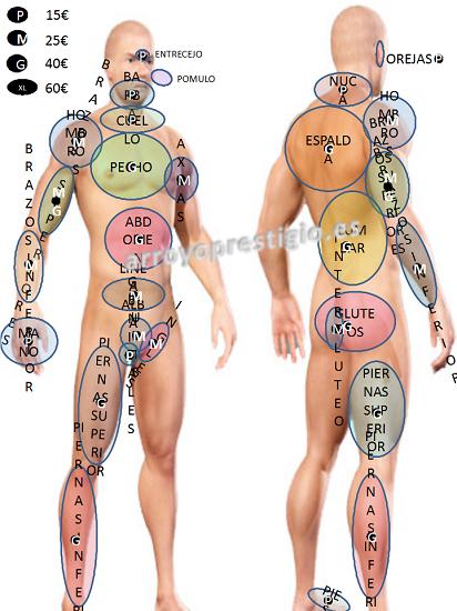 zonas cuerpo fotodepilacion caballero
