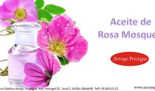 Beneficios y usos de la rosa mosqueta